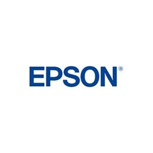 Epson Ink Black (C13T887100)
